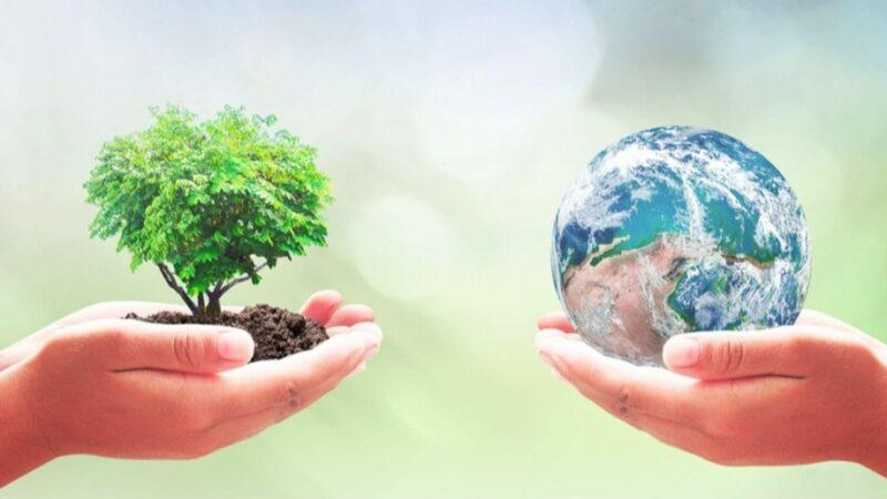 Mercati contadini anticipati a venerdì 24 aprile, Giornata della Terra, consegne a domicilio Terra Box