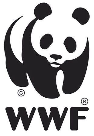 Scuola, WWF: Giardini e cortili scolastici sono risorsa per riprendere lezioni in sicurezza