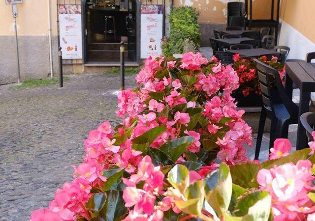 """Frascati, prorogato il concorso """"Ventimila fiori sui Balconi"""
