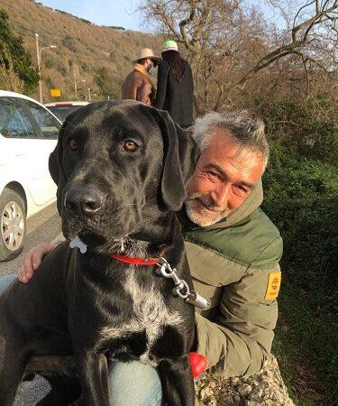 """Castel Gandolfo – Smarrito Enea, cane nero grande e """"molto buono"""""""