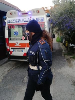 Castel Gandolfo, 11enne aggredito da un cinghiale: soccorso e accolto in un ristorante
